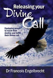 Releasing Your Divine Call - eBook cover